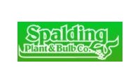 Spalding Bulb promo codes