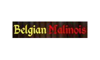 Belgian Malinois Dog Breed Store promo codes