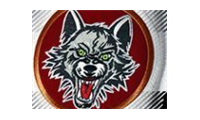 Chicago Wolves Store promo codes