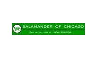 Salamander Shoes of Chicago Promo Codes