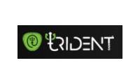 Tridenteer promo codes